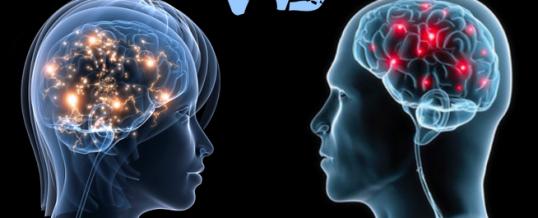 ¿Existen diferencias en el cerebro entre hombres y mujeres?